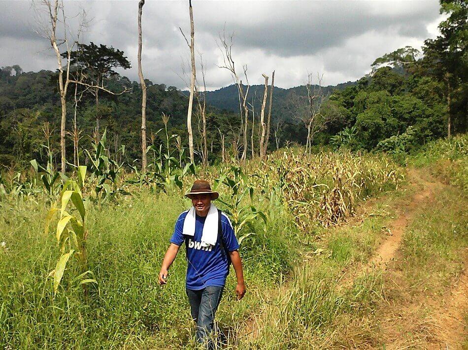 cardamom mountains trekking