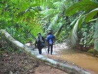 cardamom-trekking
